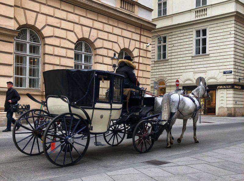 Getting Around In Vienna