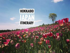 Completed Hokkaido Japan Itinerary in Spring & Summer