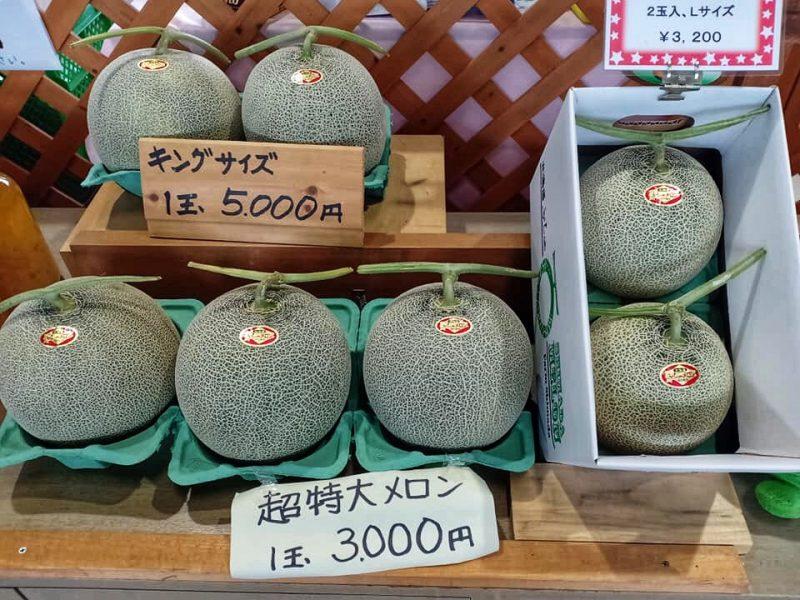 Hokkaido Tomita Melon House