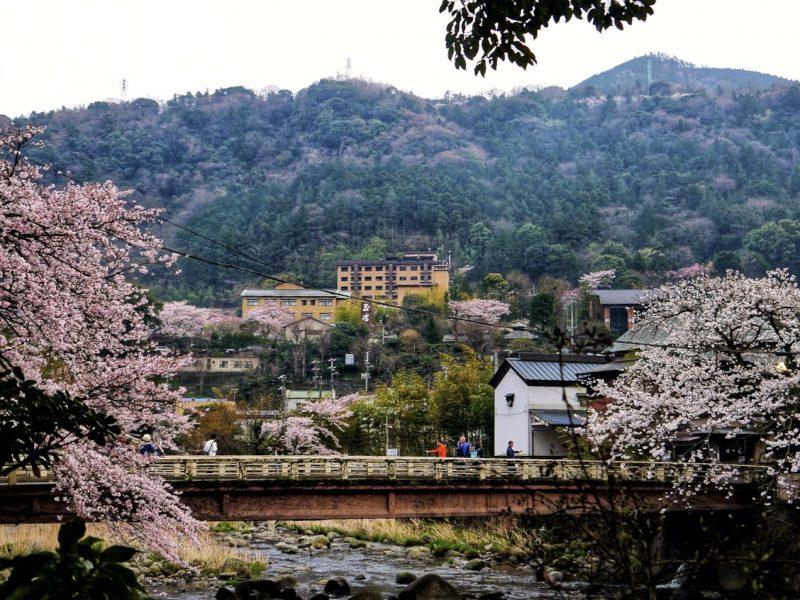 Best hot spring onsen ryokan in Hakone