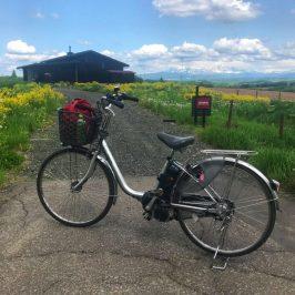 Biking Trip in Patchwork Road
