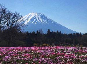 Kanto Japan Travel Itinerary