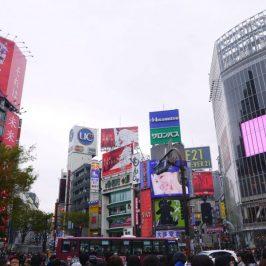Meiji Shrine, Harajuku, Shibuya Itinerary